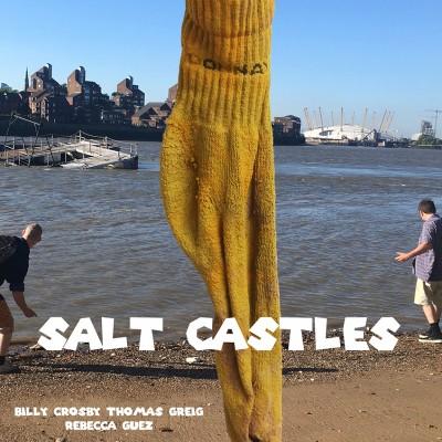 Salt Catsle