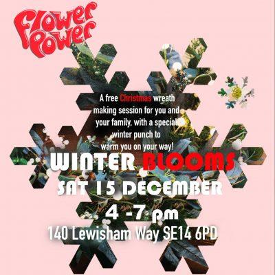 Flower Power: winter blooms